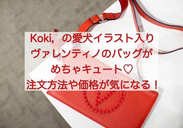 Koki,の愛犬イラスト入りヴァレンティノ製バッグの詳細は?